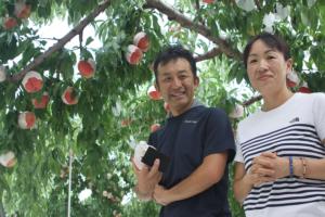 糖度21度!?桃のスーパーブランド「矢崎桃店」さんご夫婦にインタビュー!プロトン水の繋がりでお会いすることができました!